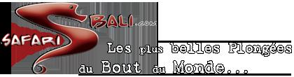 logo_sb_wp